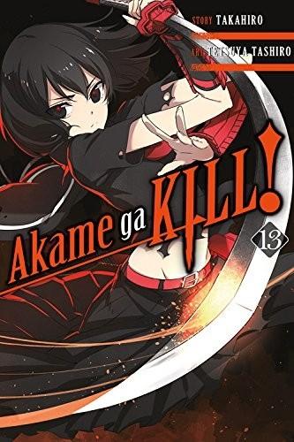 Akame ga Kill, Vol. 13 by Takahiro