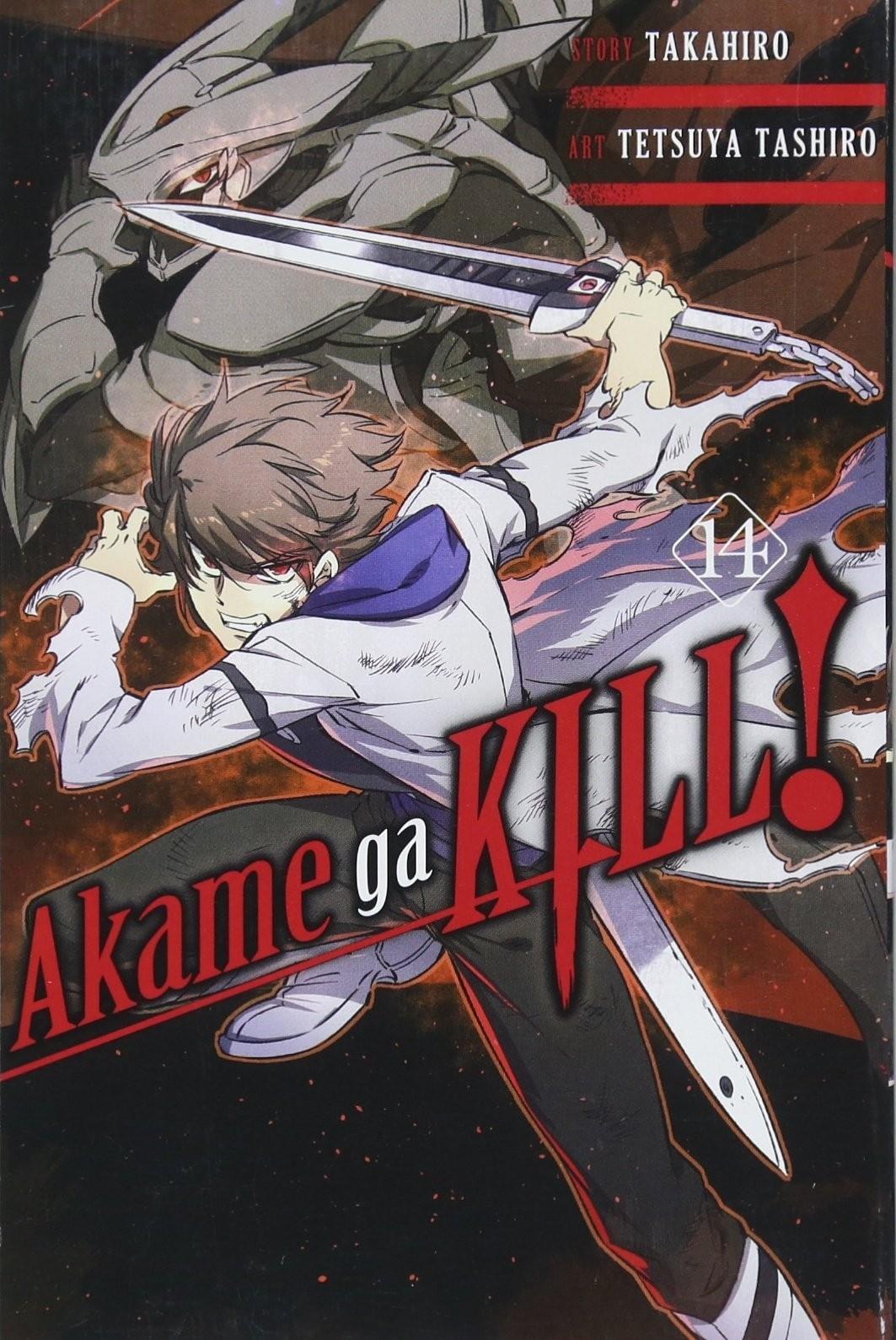 Akame ga Kill, Vol. 14 by Takahiro