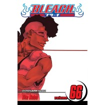 Bleach, Vol. 66 by Tite Kubo