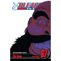 Bleach, Vol. 67 by Tite Kubo