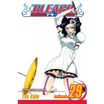 Bleach, Vol. 29 by Tite Kubo