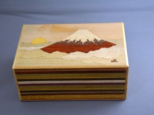 5 SUN 12 STEPS + 1 HINODE FUJI
