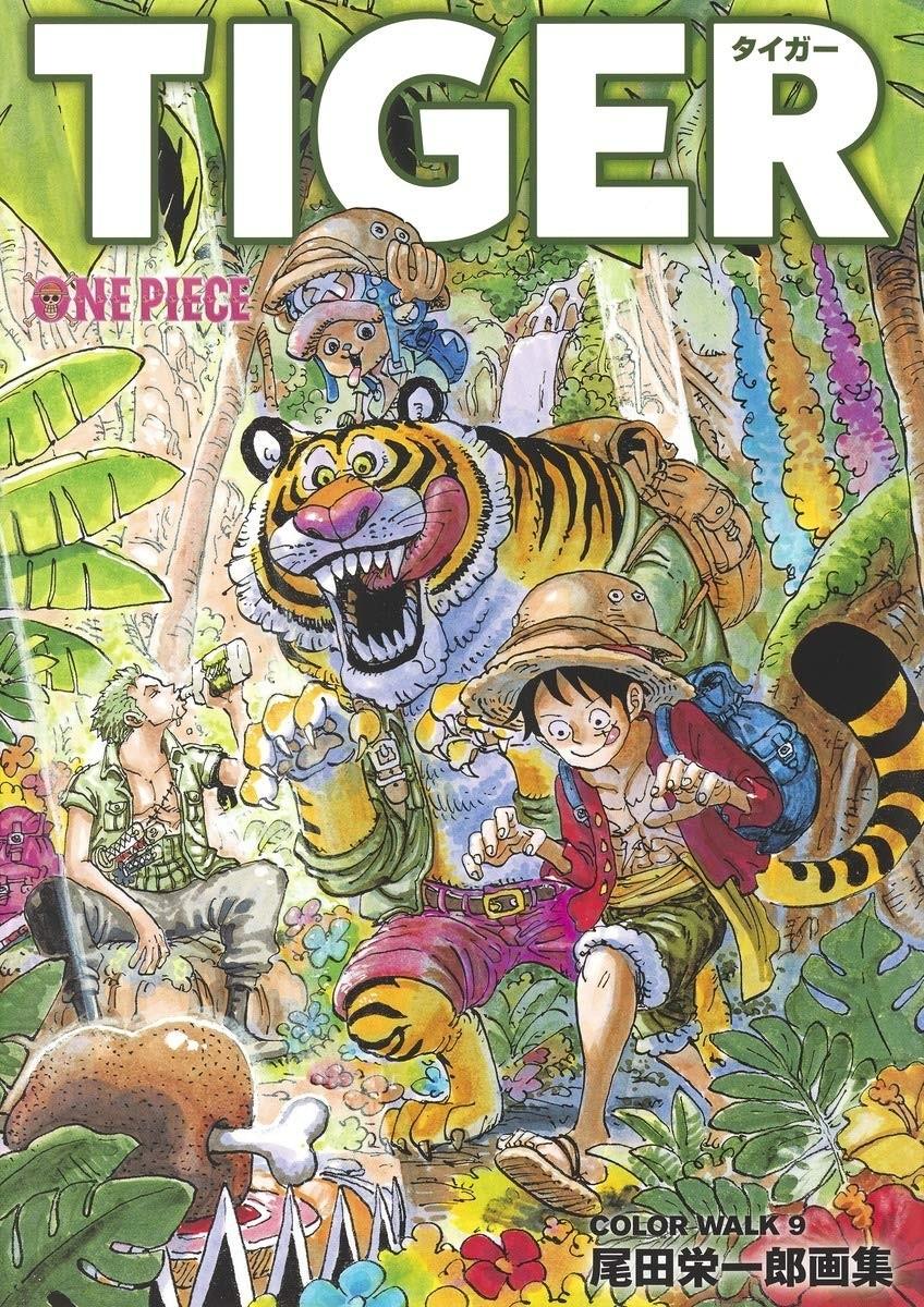 One Piece ― Illustration Book (Color Walk 9) - Japanese Import