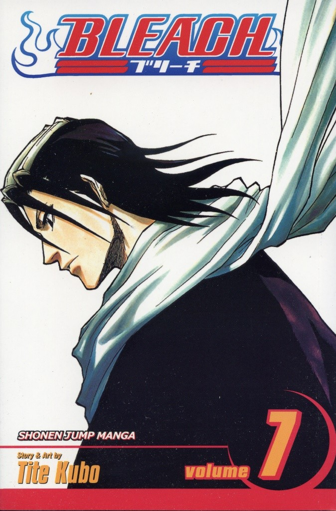 Bleach, Vol. 07