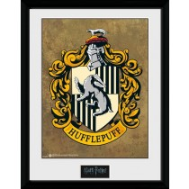 Harry Potter Collector Framed Print Hufflepuff