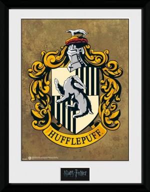 Harry Potter Collector Framed Print Hufflepuff